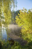 Fishing platform under willow Stock Image