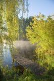 Fishing platform under willow. Old fishing platform under willow tree Stock Image