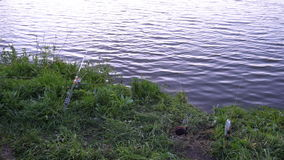 Fishing Pole waiting for fish to bite bait.  stock footage