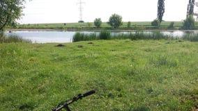 Fishing pond stock photography