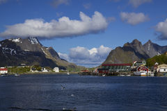 Fishing port on Lofoten Royalty Free Stock Photography