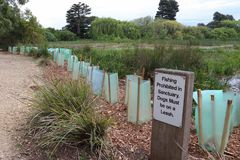 A fishing prohibited and dogs must be on leash sign. In a wetlands sanctuary Stock Image