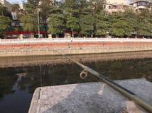 Fishing rod Stock Image