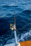 The fishing-rod equipped with the coil Stock Image