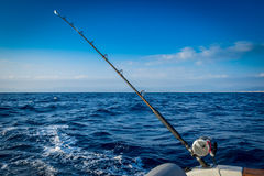 The fishing-rod equipped with the coil Royalty Free Stock Images