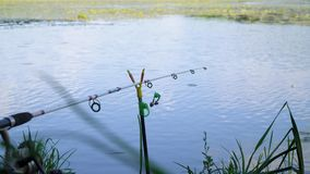 Fishing rod on the lake in summer day. Professional fishing rod waiting for bites on water river. Fishing rod on the lake in summer day stock video