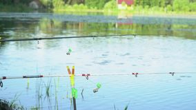 Two fishing rods on the lake in summer day. Fishing rod on the lake in summer day stock footage