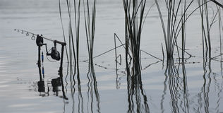 Fishing rod in the lake, waiting for the key Royalty Free Stock Images