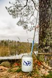 Fishing rod and milk can on the coast of wild lake stock image