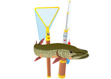 Fishing rod, net and pike Royalty Free Stock Images