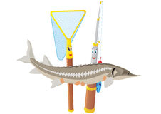 Fishing rod, net and sturgeon Royalty Free Stock Image