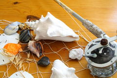 Fishing rod and sea shells Royalty Free Stock Photography