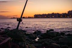 Fishing rod standing alone stock image