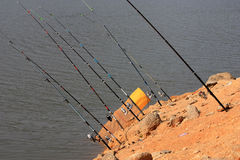 Fishing rods. 8 rods waiting for their prey Stock Images