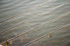 Fishing rods with cobweb. Pravec , Bulgaria Royalty Free Stock Images