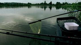 Fishing rods and fish in fishing net stock video footage
