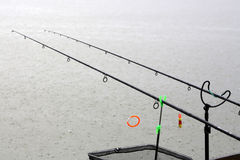 Fishing rods in rainy weather Royalty Free Stock Photography