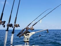 Fishing rods and reels on boat Royalty Free Stock Images