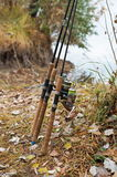 Fishing rods Royalty Free Stock Image