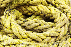 Fishing rope textures Stock Photography