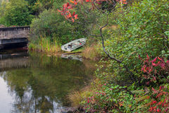Fishing rowboat parked along the lake shore. Stock Images