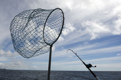 Fishing Safari in New Zealand Stock Image