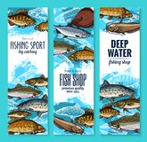 Sea fish banners for seafood or fishing design. Fishing and seafood banners set. Salmon, tuna and sea bass, perch, trout, carp, herring, catfish, flounder and Royalty Free Stock Photo