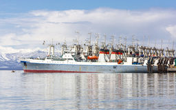 Fishing seiners near the pier in Avacha Bay in Kamchatka. Fishing seiners near the pier in Avacha Bay in Kamchatka Stock Photos