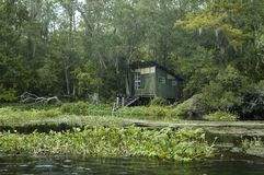 Fishing Shack. An old fishing shack on the St. Marks River in Florida Royalty Free Stock Image