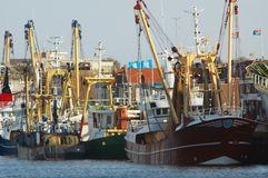 Fishing ships royalty free stock photography