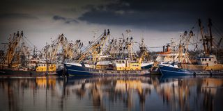 Fishing ships during majestic sunset Stock Image