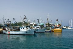 Fishing ships in the port of Vrsar Stock Photos