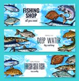 Vector sketch banners of fish for fishing shop. Fishing shop banners set of sea or ocean fishes. Vector sketch sea bass, marlin or tuna and navaga, horse Royalty Free Stock Photo