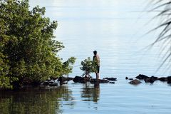 A man fishing from shoreline 1. A man fishing from a rock jetty along the shoreline royalty free stock photography