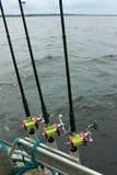 Fishing spinning on the lake Stock Photos