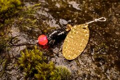Fishing spoon lure on wet stone with moss