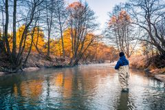 Autumn fishing. Fisherman in professional wear standing in creek. And angling trout. Autumn landscape. Fishing sport stock image