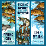Fishing sport club banner set with swimming fish. Fishing banner set with swimming fish. River perch, carp, pike, bream and crucian sketch poster of freshwater Stock Images