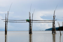 Fishing Stakes in Tabo River - Borneo - Malaysia. Tabo River in Borneo - Malaysia Royalty Free Stock Photography