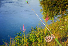 Fishing tackle for catching fish in the river. Royalty Free Stock Image