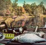 Fishing tackle and caught fish on the table Stock Images