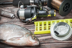 Fishing tackle and fished bream on a wooden table Royalty Free Stock Photos