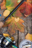 Fishing tackles on board with leafs autumn Royalty Free Stock Photo