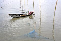 Fishing time at matla river west bengal