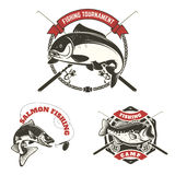 Fishing tournament labels. Carp fishing, salmon fishing, perch  Royalty Free Stock Photos