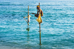 Fishing in traditional way near Galle in Sri Lanka Royalty Free Stock Photo