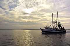 Fishing trawler on the water at sunrise. Fishing trawler on the water and dramatic clouds at sunrise Royalty Free Stock Photo