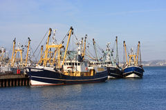 Fishing Trawlers Royalty Free Stock Photo