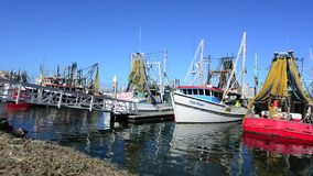 Fishing trawlers mooring at Gold Coast Fishermen's Co-Operative stock video footage