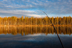 Fishing trip to Tuusjärvi. Calm lake,trees are mirrored from wa stock images
